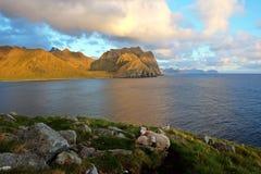 Midnatt sol på de Lofoten öarna, Norge arkivfoton
