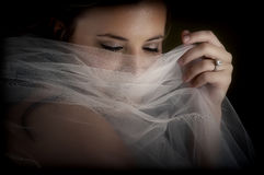 Midnight Bride 5 Stock Image