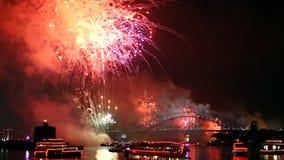 Midnight Fireworks Sydney stock video