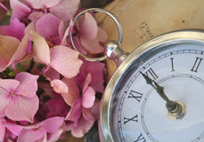Midnight o clock soon. Retro clock at twelve soon with and hydrangea flower and old book background stock images