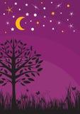 Midnight silhouette tree, grass, moon and stars Stock Photos