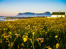 Midnight sun in Lofoten, Norway Stock Photos