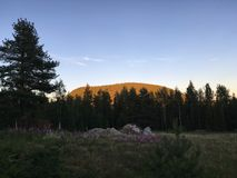 Midnight sun in North of Sweden. Rocks in the middle of the meadow with the Elephant mountain in the background. Purkijaur, Sweden Stock Images
