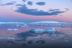 Midnight Sun - Weddell Sea - Antarctica. The Midnight sun over the icebergs in the Weddell Sea near the Antarctic Peninsula in Antarctica Stock Image