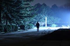 Midnight Walk Royalty Free Stock Photography