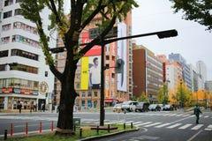 Mido-suj streeti of fall season Stock Photography