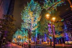Midosuji Street light illumination, Osaka, Japan. Midosuji Street, Osaka, Japan : November 2017 - Midosuji street with night light illumination with many color royalty free stock photography