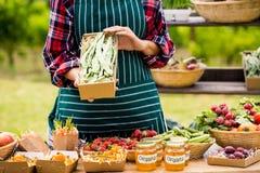 Midsection av den unga kvinnan som säljer organiska grönsaker Fotografering för Bildbyråer
