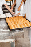 Midsection Of Baker With Bread Loaves In Baking Tray. Midsection of female baker with bread loaves in baking tray at bakery stock image