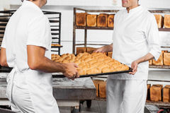 Midsection Of Baker's Carrying Bread Loaves In Tray. Midsection of male Baker's carrying bread loaves in tray at bakery stock image