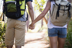 Midsection of couple holding hands in forest Royalty Free Stock Photo