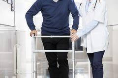 Midsection del doctor Assisting Senior Man con el caminante fotografía de archivo libre de regalías