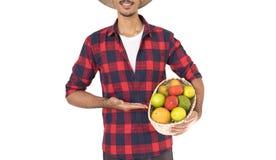 Midsection del granjero que sostiene una cesta de frutas Foto de archivo