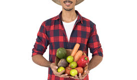Midsection del granjero que sostiene una cesta de verduras Fotografía de archivo libre de regalías