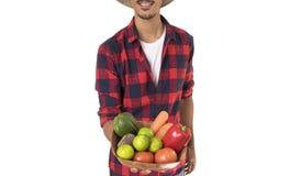 Midsection del granjero que sostiene una cesta de verduras Imágenes de archivo libres de regalías