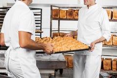 Midsection delle pagnotte di trasporto del pane del panettiere in vassoio Immagine Stock