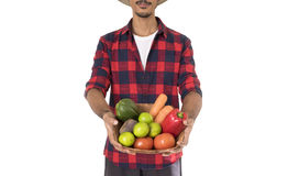 Midsection of farmer holding a basket of vegetables Stock Image