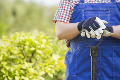 Midsection of gardener holding spade in plant nursery Royalty Free Stock Photography