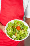 Chef Presenting Salad. Midsection of male chef presenting salad Stock Photo