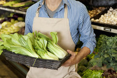 Midsection of man holding basket of bok choy in supermarket Royalty Free Stock Images