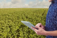 Midsection of man using digital tablet at field against sky Royalty Free Stock Image