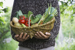 Midsection Of Man With Vegetable Basket Royalty Free Stock Image