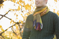 Midsection of man wearing sweater and muffler in park during autumn Royalty Free Stock Image