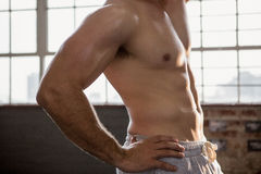 Midsection of a muscular man posing Royalty Free Stock Photography