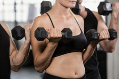 Midsection of people lifting dumbbell Stock Image