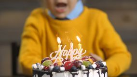 Midsection of toddler boy blowing candles on cake. Midsection of sweet cheerful toddler boy, blowing candles on cake and clapping hands during his birthday party stock footage