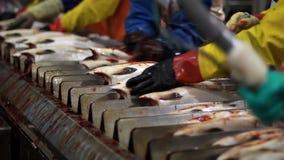 Midsection van arbeiders stock footage