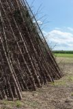 for a midsummer festival bonfire on a very sunny day in august i Stock Images