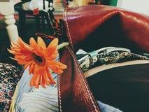 Midsummer flower. Flower in a bag Stock Photography