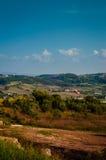 Midsummer Landscape Stock Image