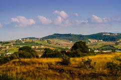 Midsummer Landscape Royalty Free Stock Photography