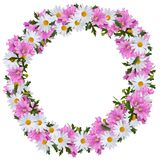 Midsummer wreath of Daisies and Mallows. For traditional midsummercelbration suitable as flower wreath in the hair at midsummer eve Royalty Free Stock Photo