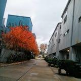 Midtown en caída foto de archivo libre de regalías