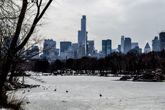 Midtown in winter from Central Park Royalty Free Stock Images