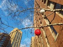 Midtownferiecityscape Prydnader på trädfilialer nedanför högväxta kontorsbyggnader arkivfoto