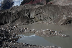 Midui冰川在西藏 免版税图库摄影