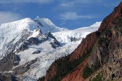 Midui glaciär i Tibet Arkivbilder