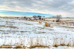 Midwest αμερικανικό αγρόκτημα το χειμώνα στοκ φωτογραφίες