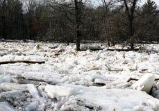 Midwest η πλημμύρα δημιουργεί τη μαρμελάδα πάγου στοκ φωτογραφία με δικαίωμα ελεύθερης χρήσης