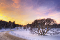 midwest над заходом солнца прерии Стоковая Фотография RF