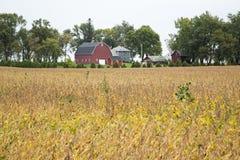 Midwest farmstead συγκομιδή τομέων σιταποθηκών Στοκ Εικόνες