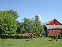 Midwest Horse Farm. Idyllic rural scene with grazing horses, red barn and white silo against blue summer sky Royalty Free Stock Photography