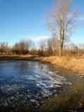 Midwest Pond Landscape Stock Photo