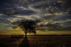 Midwest solnedgång Arkivfoto