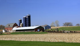 Midwest USA Dairy Farm royalty free stock images