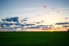 Midwest vårsolnedgång royaltyfria bilder